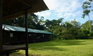 Shiripuno Lodge - Our Lodging facilities offers access to the forest sounds.