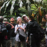 Shiripuno Amazon Lodge - Small groups explore the diversity of life of Yasuni Biosphere Reserve.