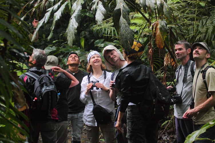 40 days Small groups explore the diversity of life of Yasuni Biosphere Reserve.