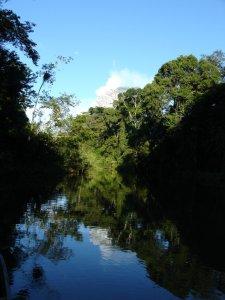 highlights - river