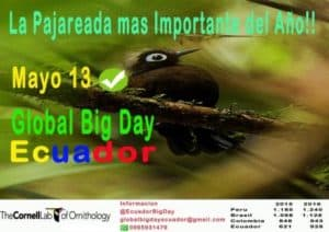 Ecuador Global Big Day