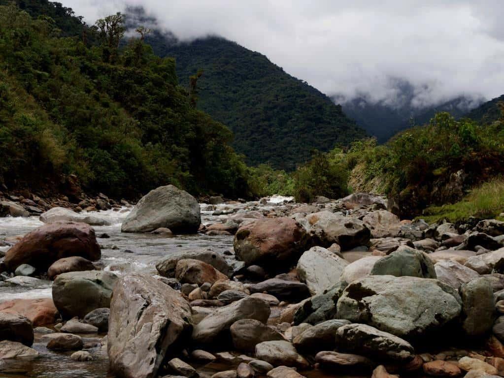 Ecuador Nature Tour
