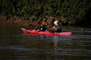 Amazon Kayaking