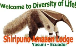 Welcome to Diversity of Life