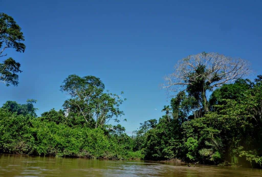 Shiripuno River